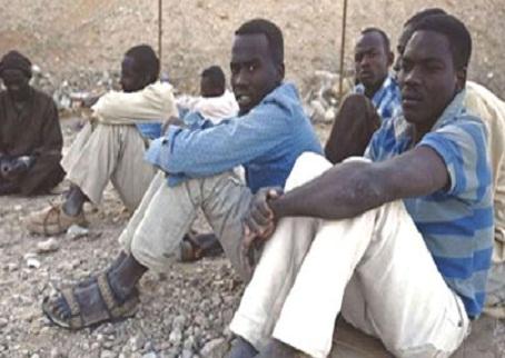 افارقة الحديدة: ترحيل قرابة ألفي أفريقي تم ضبطهم