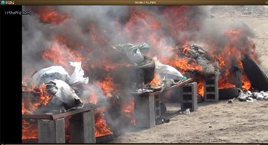حشيشش إتلاف 3 أطنان و133 كيلو من الحشيش في الحديدة و700 ألف حبة مخدر
