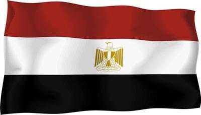مصر12 مصر تبدي إستيائها من تقرير منظمة العفو حول الضربة الجوية ضد داعش بليبيا