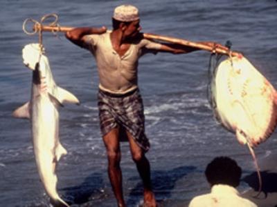 10 12 30 1645997230   الصيادين اليمنيين المحتجزين في السودان يناشدون الرئيس بالتدخل السريع لأطلاق سراحهم