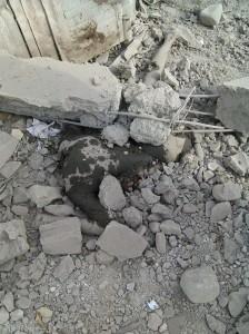 11796437 10155940722105445 1028631027344813866 n 224x300  بالصور   طيران التحالف السعودي يقصف تجمعاً للحوثيين في مديرية بيت الفقية وحيس بالحديدة