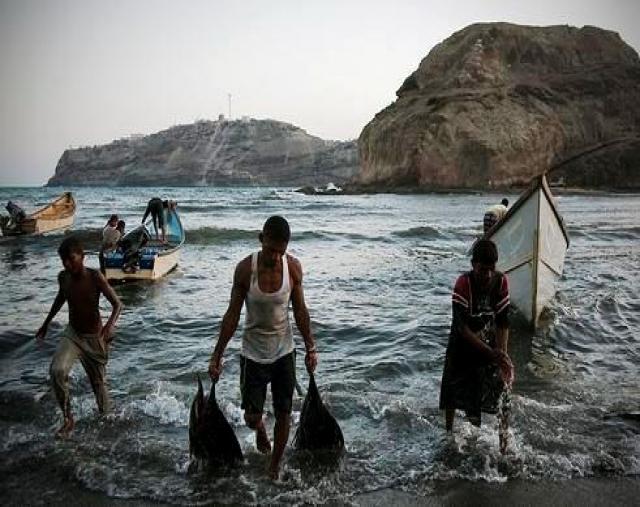 تهامة الشعبية بالحديدة تدين ما يتعرض لة الصيادين وتطالب بسرعة الأفراج عنهم في السجون