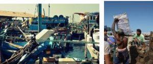 358 300x127 الحديدة : قوارب متهالكة وروائح نتنه تنبعث من سوق المحوات وغياب رقابي على امتداد الساحل